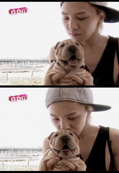 มาดูกันว่าเหล่าไอดอล K-POP เค้ามีสัตว์เลี้ยงตัวโปรดอะไรกันบ้าง!!