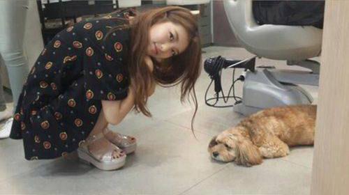 ซูจีถูกซุนชิมน้องหมาสุดรักของลีฮโยริเมินซะแล้ว!!