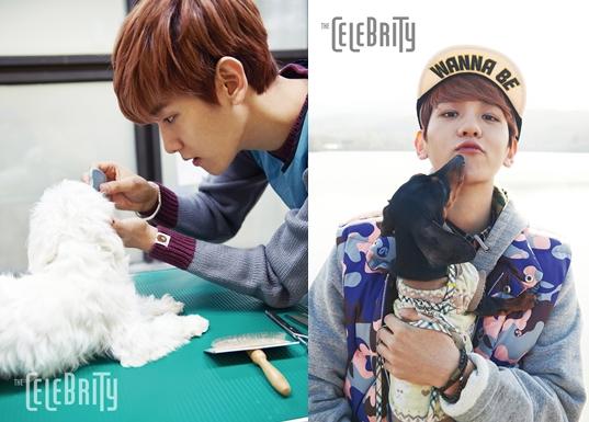 แบคฮยอน EXO ช่วยดูแลสุนัขที่ศูนย์ช่วยเหลือสัตว์เลี้ยง!!