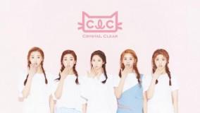 clc_debut_2015