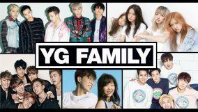 YG FAMILY-2016-PLAN